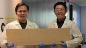 Δημιούργησαν ξύλο γερό σαν ατσάλι!